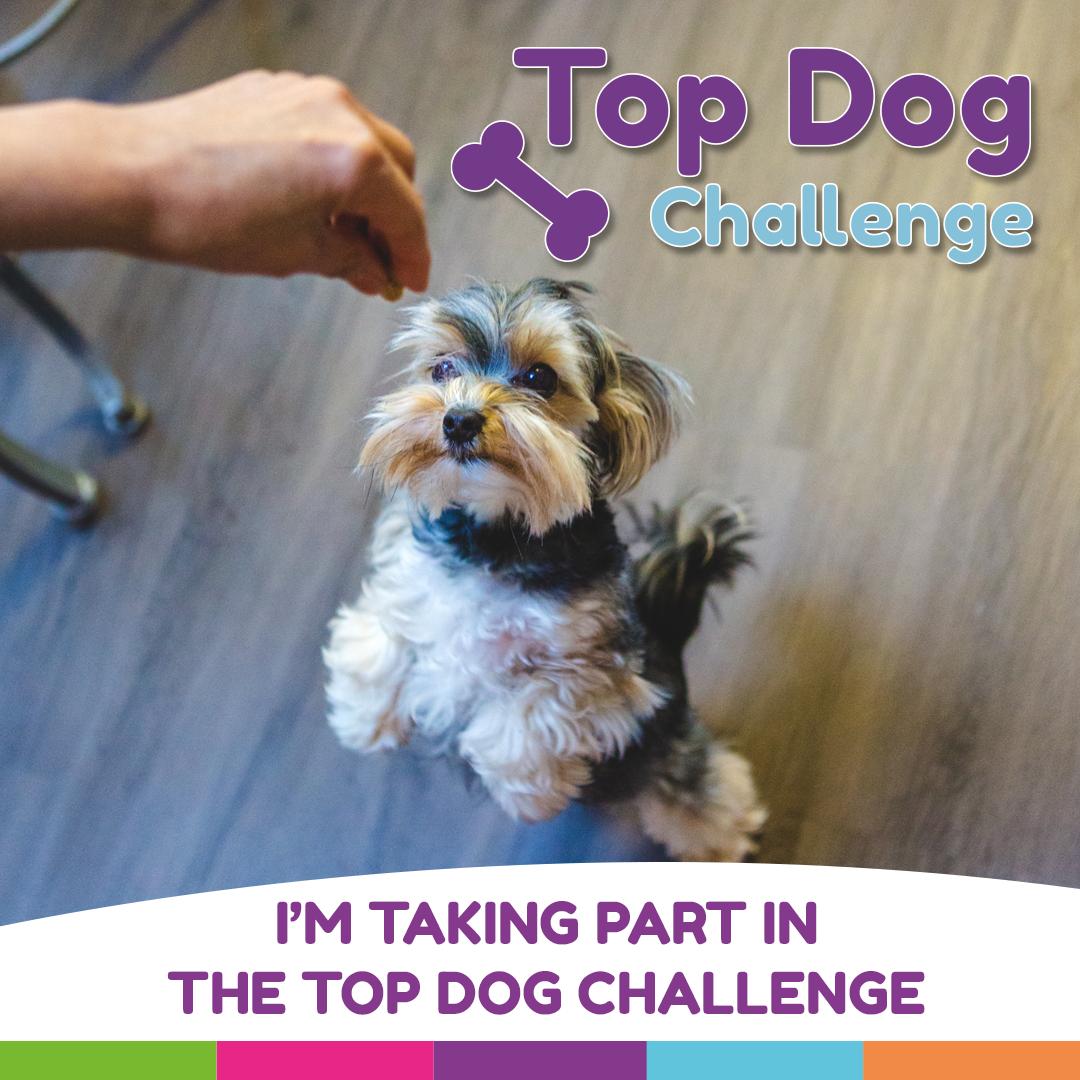 Top Dog - Social Media Post 2