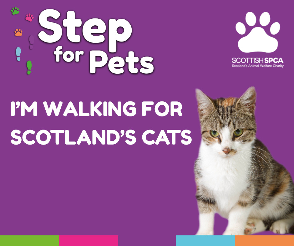 Step for Pets - Cats