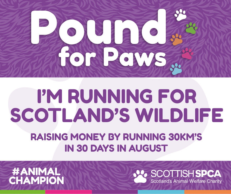 I'm running for Scotland's wildlife