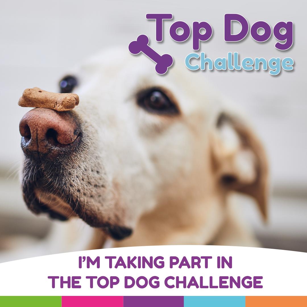 Top Dog - Social Media Post 1