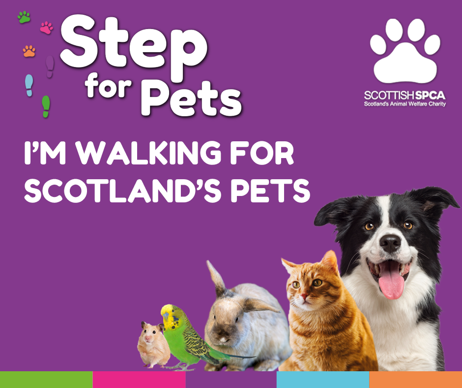 Step for Pets - Pets