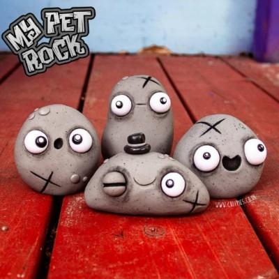Pets rock!